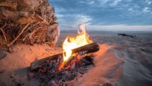 Solo Stove Campfireを購入して使ってみた感想